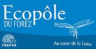 logo_ecopoleW