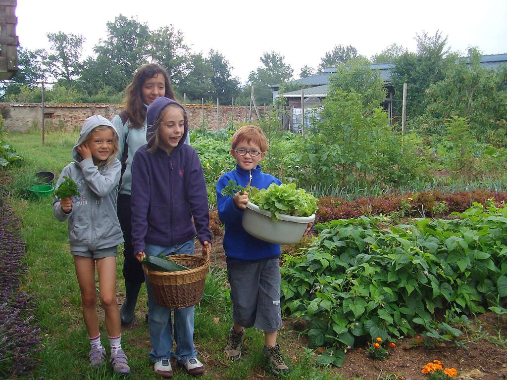 Accueil social la ferme du tilleul for Ca vient du jardin